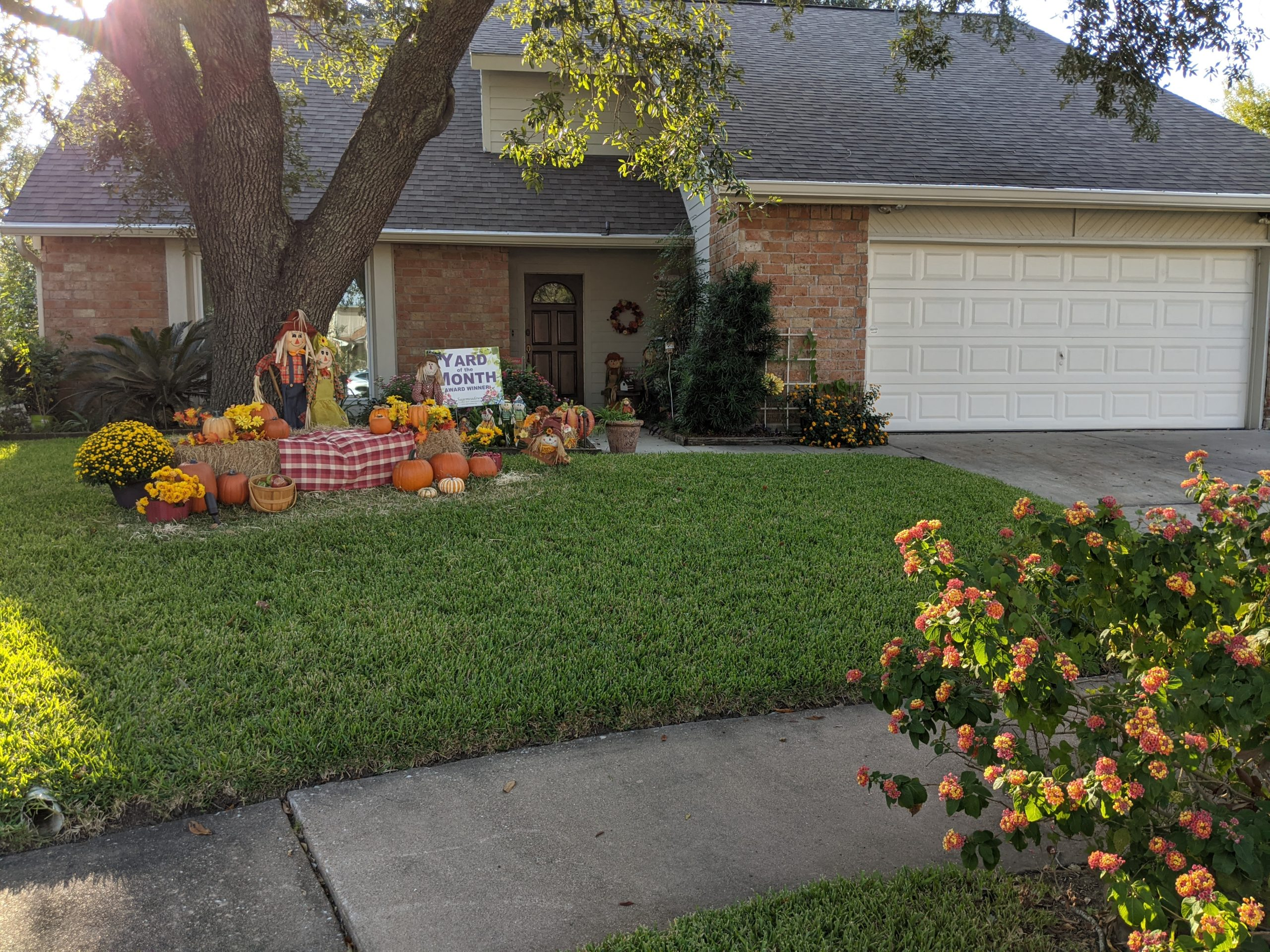 October 2020 – Yard of the Month Winner!