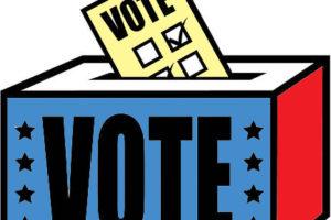 Sagemeadow 2021 Election
